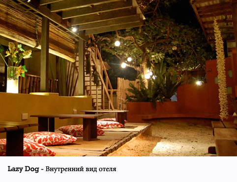 Lazy Dog bed&breakfast
