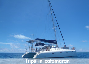 Catamaran trips to Seco island - Exterior of the luxury Catamaran